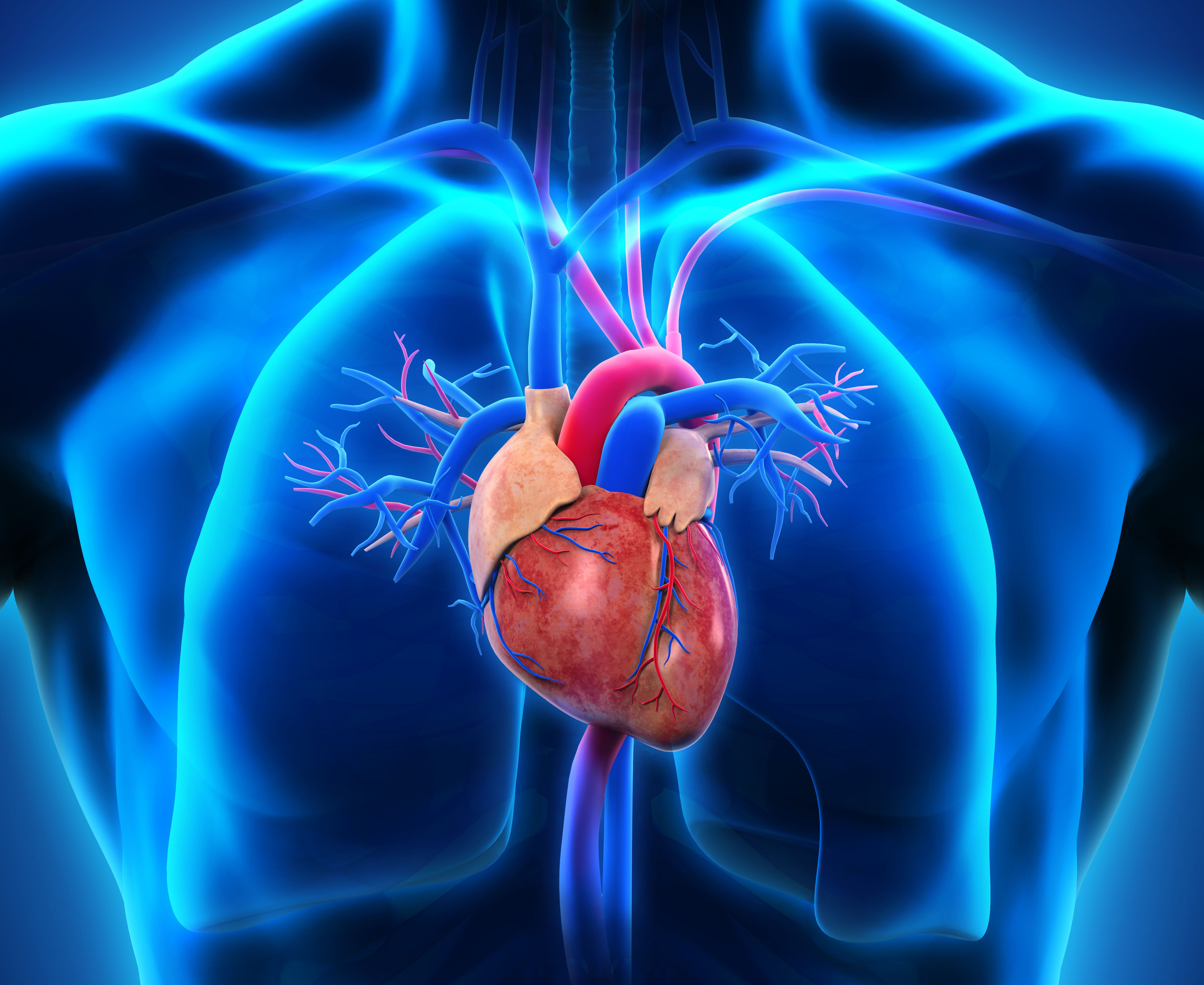 Cardiac Catheterization | Hunterdon Cardiovascular Associates | New Jersey